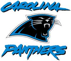 Bank Of America Carolina Panthers Stadium Triatek
